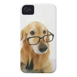 Dog wearing  tie and glasses sitting on chair iPhone 4 cover