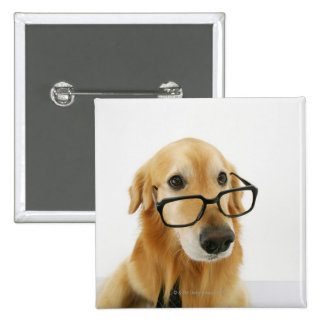 Dog wearing  tie and glasses sitting on chair pinback button