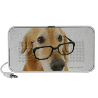 Dog wearing  tie and glasses sitting on chair portable speaker