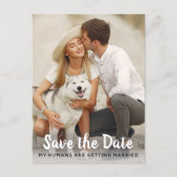 Dog Wedding Save The Date Announcement Postcard