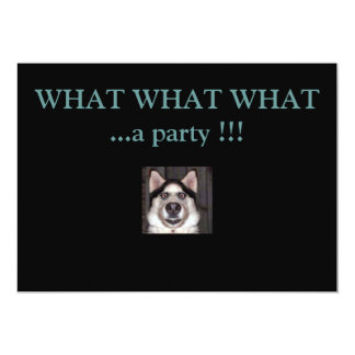 Dog, WHAT WHAT WHAT     ...a party !!! Card