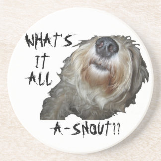 "Dog ""WHAT'S IT ALL A-SNOUT??"" Coasters"
