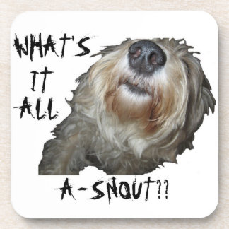 "Dog ""WHAT'S IT ALL A-SNOUT??"" Coasters - Set of 6"