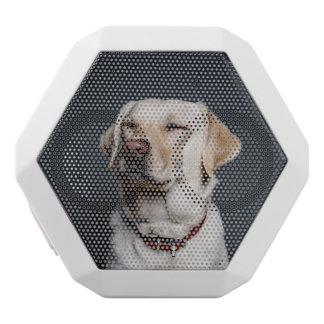 dog white bluetooth speaker