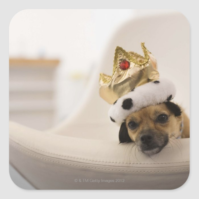 Dog with a crown square sticker