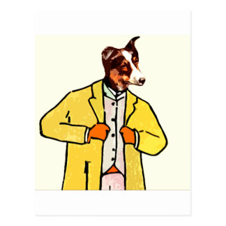Dog with a new coat postcard