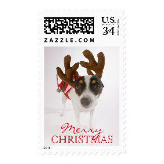 Dog With Antlers And Bell Postage