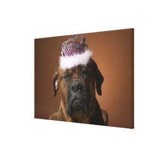 Dog with birthday crown on head canvas print