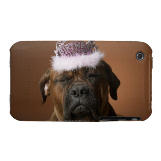 Dog with birthday crown on head iPhone 3 Case-Mate cases