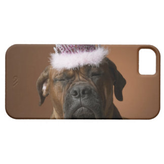 Dog with birthday crown on head iPhone 5 covers