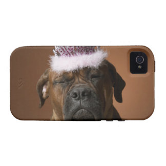 Dog with birthday crown on head iPhone 4/4S case