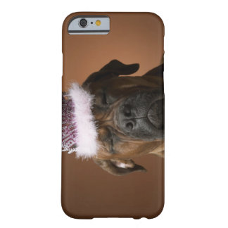 Dog with birthday crown on head barely there iPhone 6 case