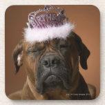 Dog with birthday crown on head coasters