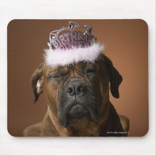 Dog with birthday crown on head mouse pad