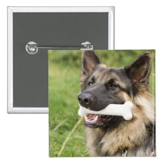 Dog with bone button