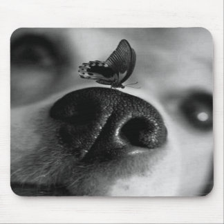 Dog With Butterfly on Nose Mouse Pad