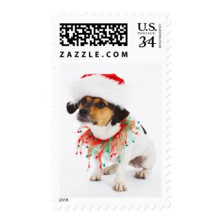 Dog with Christmas Collar and Santa Hat Postage