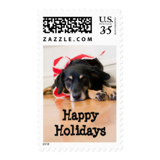 Dog with Christmas ribbons Postage Stamp