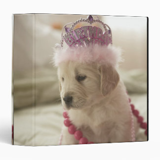 Dog with decorations on bed 3 ring binder