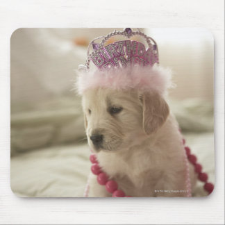 Dog with decorations on bed mouse pad