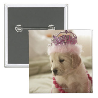 Dog with decorations on bed pinback button