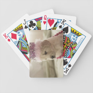 Dog with decorations on bed bicycle poker deck
