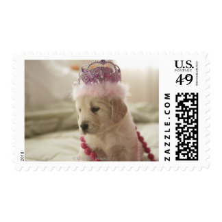 Dog with decorations on bed postage