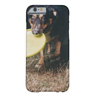 Dog With Frisbee in Mouth Barely There iPhone 6 Case