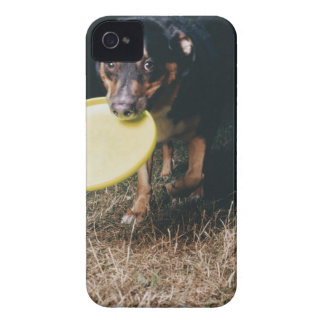 Dog With Frisbee in Mouth Case-Mate iPhone 4 Case