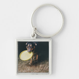 Dog With Frisbee in Mouth Silver-Colored Square Keychain