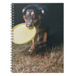 Dog With Frisbee in Mouth Spiral Notebook