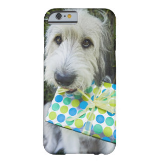 Dog with gift in mouth barely there iPhone 6 case