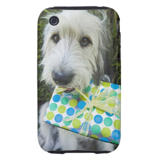 Dog with gift in mouth iPhone 3 tough case