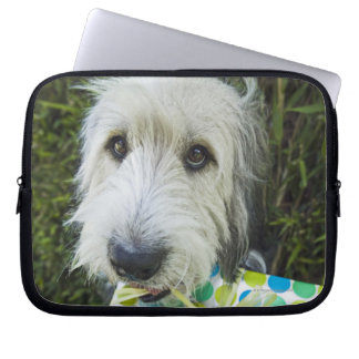 Dog with gift in mouth laptop computer sleeves