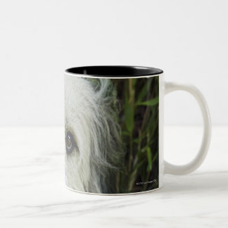 Dog with gift in mouth Two-Tone coffee mug