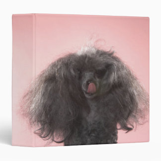 Dog with hair in front of face and tongue out 3 ring binder