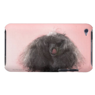 Dog with hair in front of face and tongue out iPod touch Case-Mate case
