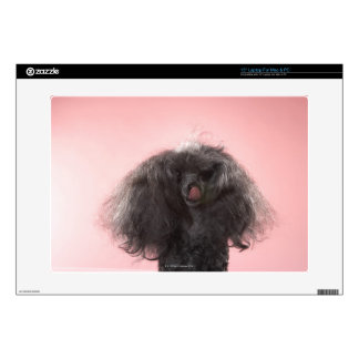 """Dog with hair in front of face and tongue out skins for 15"""" laptops"""