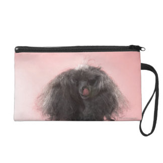Dog with hair in front of face and tongue out wristlet