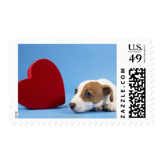 Dog with heart postage