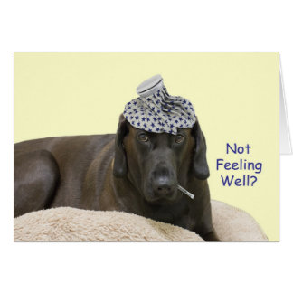 Dog with Ice Pack Not Feeling Well Card