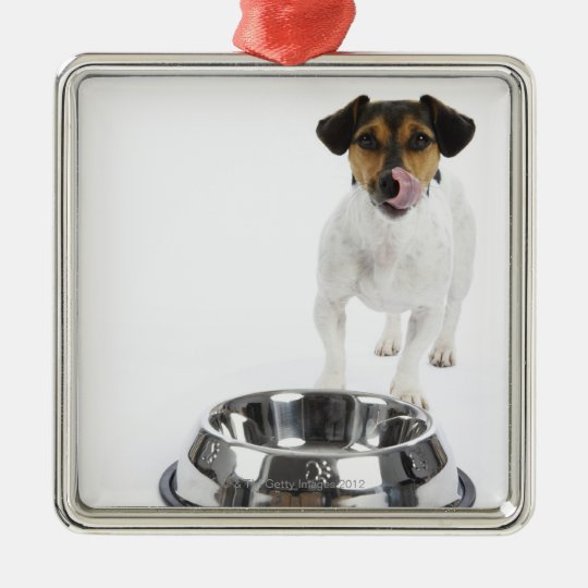Dog with Large Bowl Metal Ornament