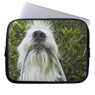 Dog with leash in mouth laptop computer sleeve