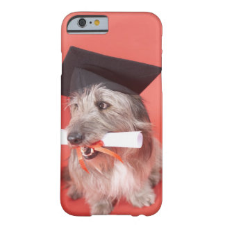Dog with mortarboard and diploma barely there iPhone 6 case