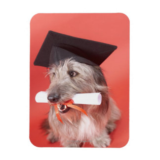 Dog with mortarboard and diploma flexible magnets