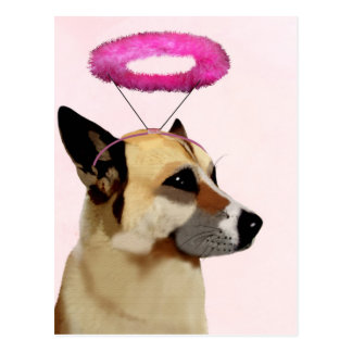 Dog with Pink Halo Postcard