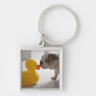 Dog with plastic duck keychain