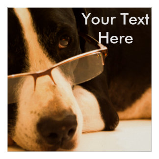 Dog with Reading Glasses Poster