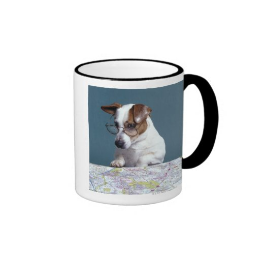 Dog with reading glasses studying map coffee mugs