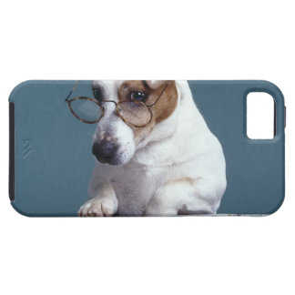 Dog with reading glasses studying map iPhone SE/5/5s case